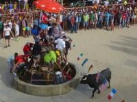 Fiesta de Toros Cuacos de Yuste 2015 5